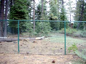 green color coated chain link fence